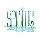 Progettazione di iscrizione della primavera Illustrazione di colore Fotografia Stock