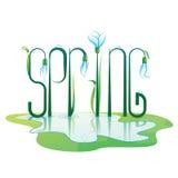 Progettazione di iscrizione della primavera Illustrazione di colore Fotografie Stock Libere da Diritti