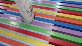 Progettazione di legno con delle le bande colorate multi Fotografia Stock