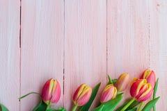 Progettazione di legno del fondo di arte dei tulipani astratti della molla Immagini Stock