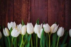 Progettazione di legno del fondo di arte dei tulipani astratti della molla Immagine Stock