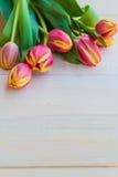 Progettazione di legno del fondo di arte dei tulipani astratti della molla Fotografia Stock