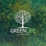 Progettazione di logo dell'albero Immagini Stock Libere da Diritti