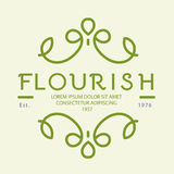 Progettazione di logo floreale Immagine Stock
