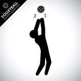 Progettazione di pallavolo Immagine Stock