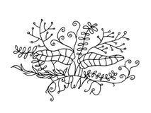 Progettazione di scarabocchio delle piante Fotografia Stock
