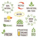 Progettazione di tipografia di vettore per alimento biologico Fotografie Stock