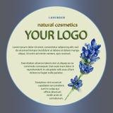 Progettazione di un pacchetto per i prodotti dei cosmetici con lavanda Fotografia Stock