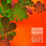 Progettazione di vendita di caduta Goda dell'insegna di vendite di autunno Fotografie Stock