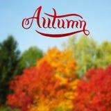 Progettazione disegnata a mano di autunno Immagini Stock Libere da Diritti