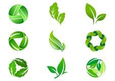 Progettazione ed icona verdi di logo di vettore della foglia Fotografia Stock