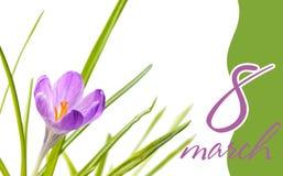 Progettazione elegante della cartolina d'auguri per la celebrazione internazionale di giorno del ` s delle donne Immagine Stock