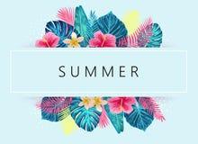Progettazione esotica e tropicale di estate del fondo Fotografie Stock