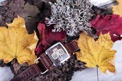 Progettazione Fa di programma di attesa dell'orologio di colori delle foglie di minuto di ora della data di zona di Lichen Presen Immagine Stock