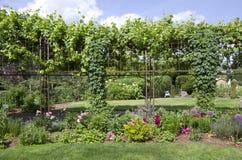 Progettazione felice del giardino del cortile Fotografie Stock Libere da Diritti