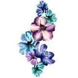 Progettazione floreale dell'acquerello Immagine Stock