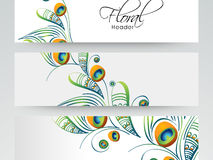 Progettazione floreale dell'intestazione o dell'insegna del sito Web Fotografia Stock