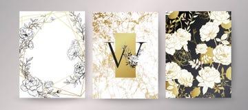 Progettazione floreale della struttura Disposizione dell'invito di nozze Composizione botanica illustrazione vettoriale