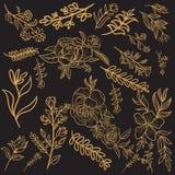 Progettazione floreale di vettore dell'oro illustrazione vettoriale