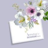 Progettazione grafica dei fiori variopinti d'annata - gigli e anemoni Immagine Stock