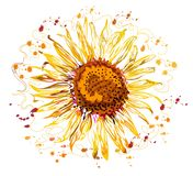 Progettazione grafica del fiore di Sun, stili variopinti immagini stock