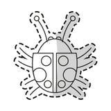 Progettazione isolata dell'insetto illustrazione di stock