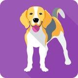 Progettazione piana dell'icona del cane Fotografie Stock