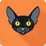 Progettazione piana dell'icona del gatto nero di Bombay Immagine Stock