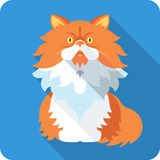 Progettazione piana dell'icona del gatto persiano di vettore Fotografie Stock