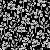 Progettazione senza cuciture in bianco e nero con le piante dell'acquerello Fotografia Stock Libera da Diritti
