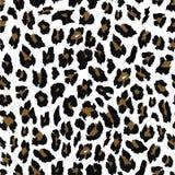 Progettazione senza cuciture del modello del leopardo Fondo dell'illustrazione fotografie stock libere da diritti
