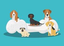 Progettazione sveglia dei cani illustrazione vettoriale