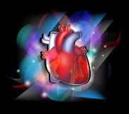 Progettazione variopinta di cardiologia illustrazione di stock