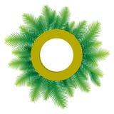 Progettazione verde di saluto della foglia della palma Fotografia Stock