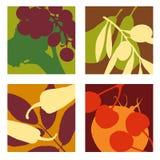 Progettazioni astratte moderne della verdura e della frutta Immagini Stock