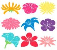 Progettazioni floreali Colourful illustrazione vettoriale