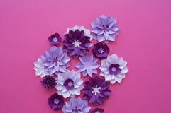 Progettazioni floreali della natura della pianta del fiore Immagine Stock Libera da Diritti
