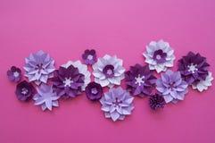 Progettazioni floreali della natura della pianta del fiore Fotografie Stock Libere da Diritti