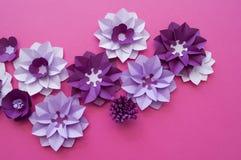 Progettazioni floreali della natura della pianta del fiore Immagini Stock