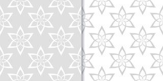 Progettazioni ornamentali floreali grigio chiaro Insieme dei reticoli senza giunte Fotografia Stock Libera da Diritti