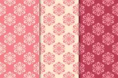 Progettazioni ornamentali floreali rosso ciliegie Modelli senza cuciture verticali Fotografia Stock