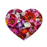 Progetti le cartoline d'auguri nella forma del cuore, isolata sul backgrou bianco Fotografia Stock Libera da Diritti