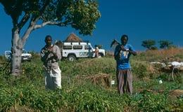 Progetto della CURA del NGO per ricostruzione di argriculture Fotografia Stock Libera da Diritti
