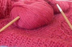 Progetto di lavoro a maglia Fotografia Stock