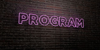 PROGRAM -Realistic Neon Sign on Brick Wall background - 3D rendered royalty free stock image Stock Images