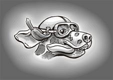 Programa piloto dálmata del perro Imagen de archivo libre de regalías