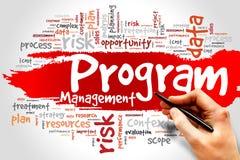 Programm-Management lizenzfreie stockfotografie
