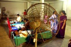 Programma di donazione di anima in India. Immagini Stock