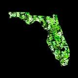 Programma di Florida con i dollari royalty illustrazione gratis