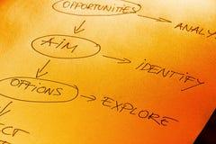 Programma di mente della gestione di progetti Immagine Stock